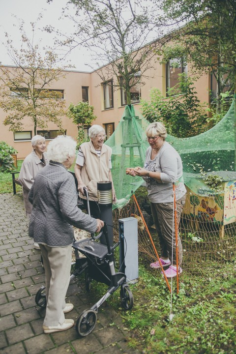 """""""Nimm 4"""": Stadthühner im Altenheim. Foto: Maria Stiehler."""