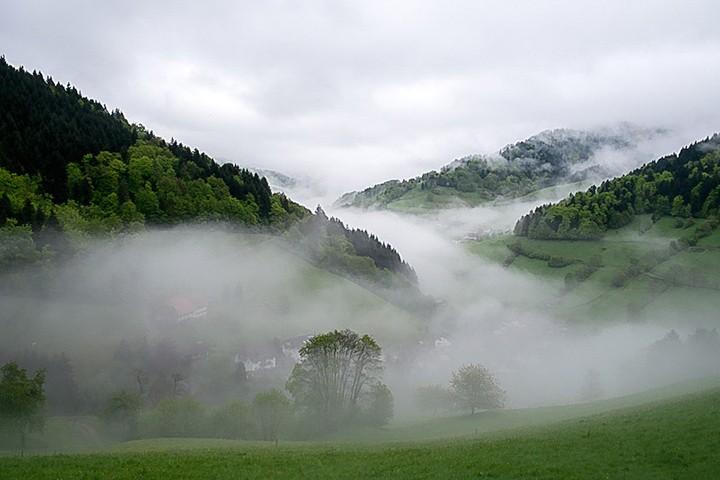 Aus der Serie Eine Junge Familie im Schwarzwald, Foto: Martin Hufnagel