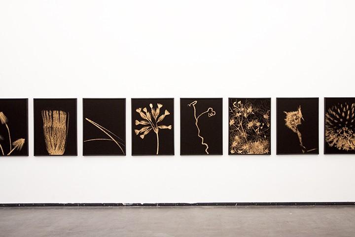Teil der Ausstellung Nothing true at all, Werke von Ludwig Rauch