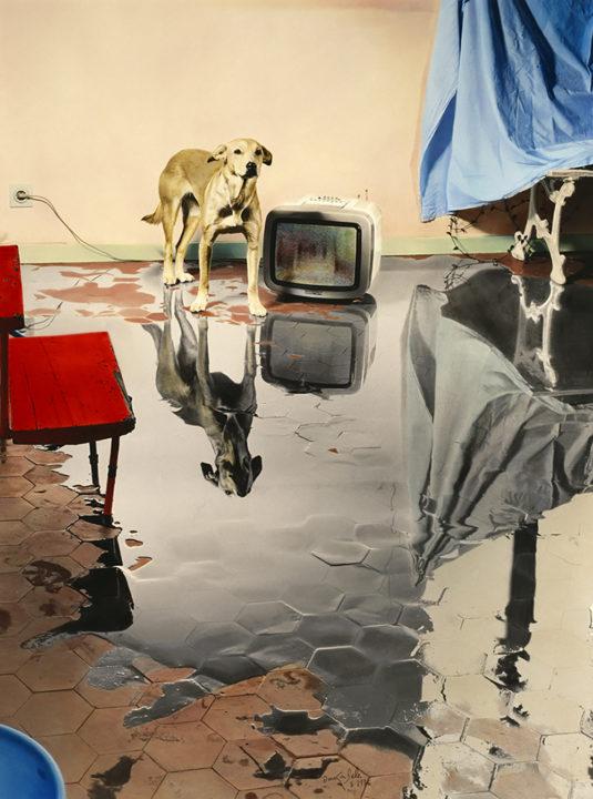 """""""Me levanto por la mañana, hay un gran charco en mi casa"""", © Ouka Leele 1986"""